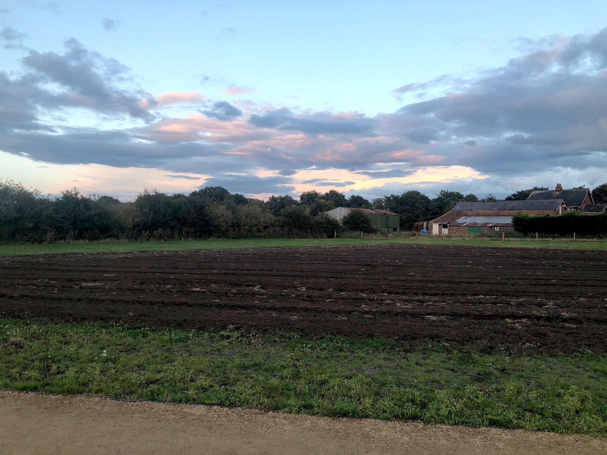 Rheads Meadow seeded