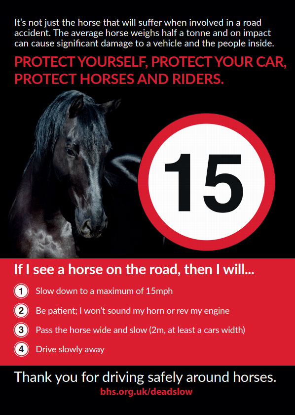 Horses are unpredictable overtake at 15 miles an hour